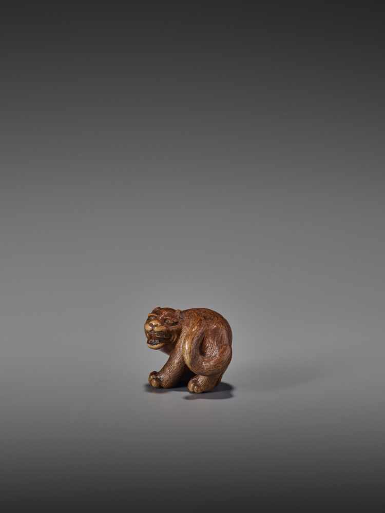 A RARE WOOD NETSUKE OF A SNARLING TIGER UnsignedJapan, 19th century, Edo period (1615-1868)A compact - Image 3 of 11