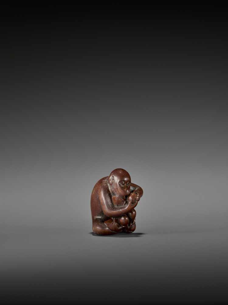 TOMOKAZU: AN EXCELLENT WOOD NETSUKE OF A MONKEY EATING PERSIMMONS By Kano Tomokazu, signed - Image 8 of 11