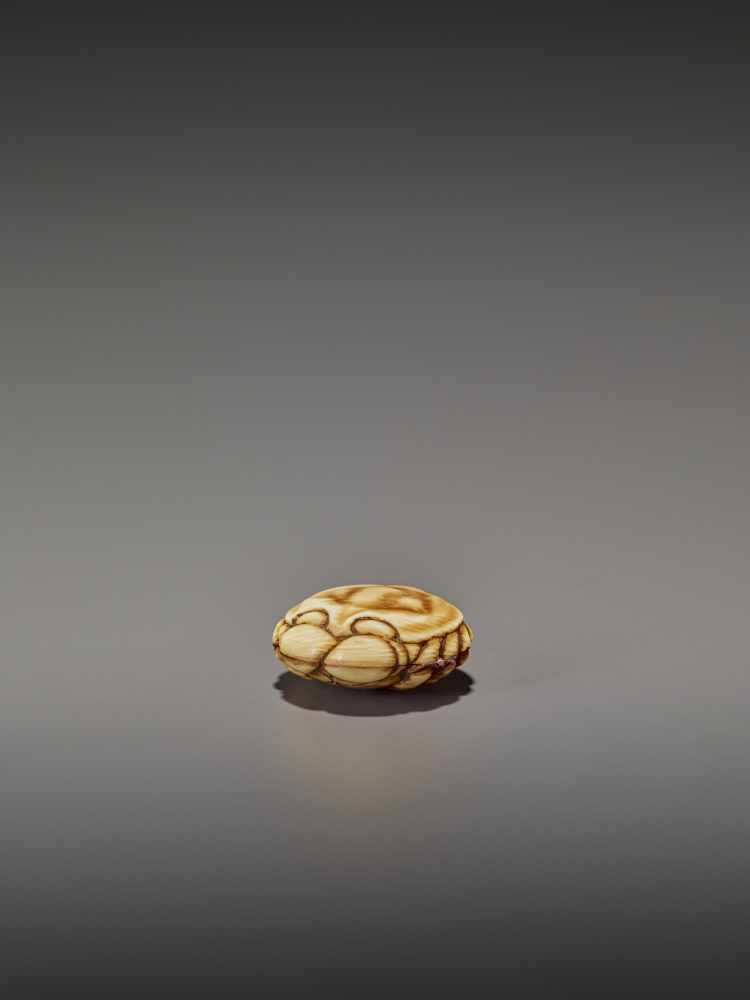A FINELY STAINED WALRUS IVORY TWO-PART MANJU NETSUKE OF A CRAB UnsignedJapan, Osaka, early to mid- - Image 3 of 10