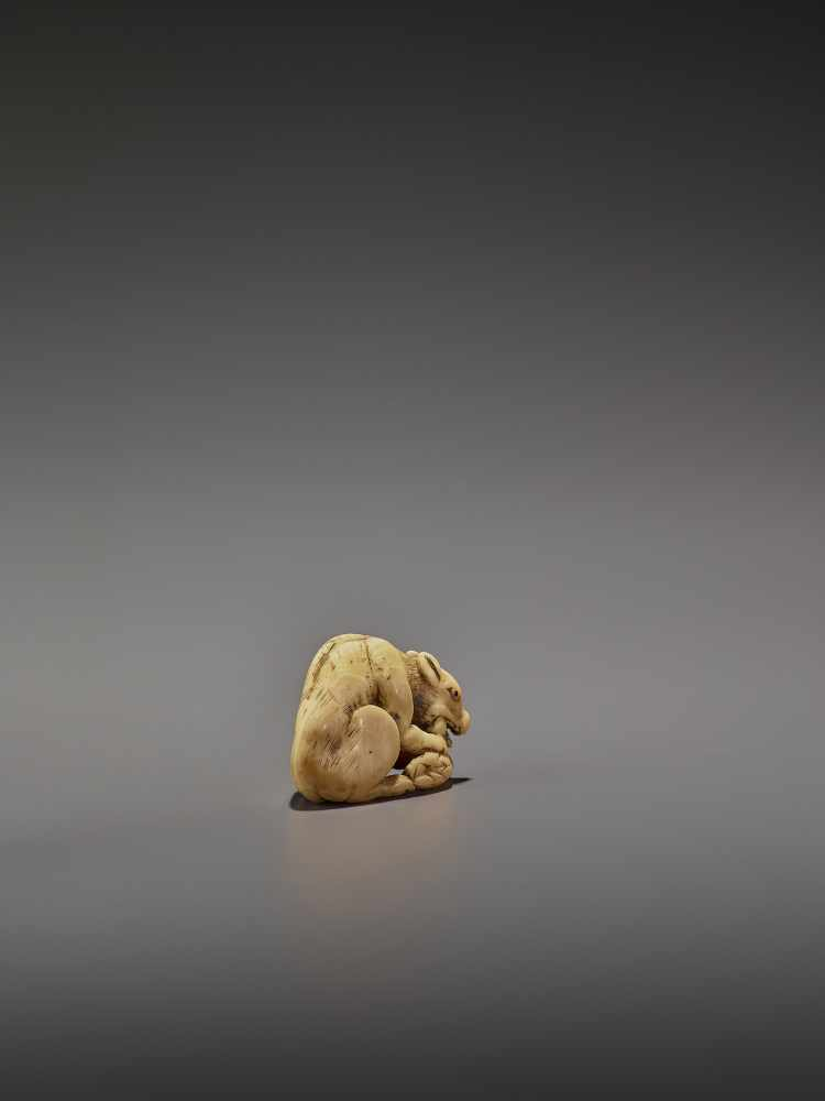 AN EARLY IVORY NETSUKE OF A WOLF WITH HAUNCH UnsignedJapan, Kyoto, 18th century, Edo period (1615- - Image 8 of 10