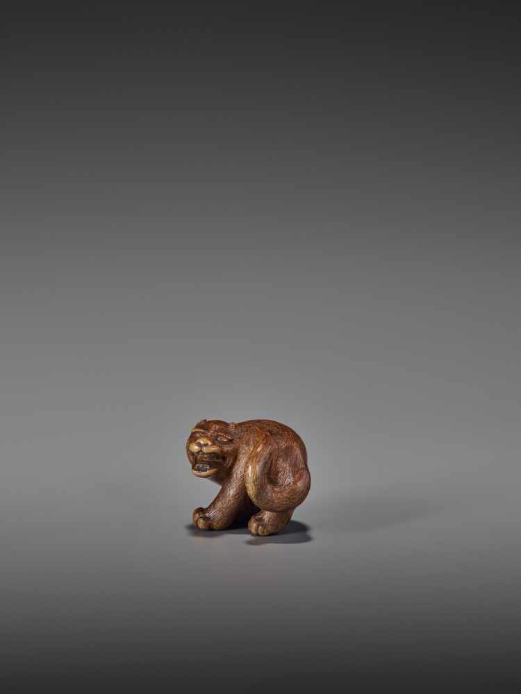 A RARE WOOD NETSUKE OF A SNARLING TIGER UnsignedJapan, 19th century, Edo period (1615-1868)A compact - Image 10 of 11