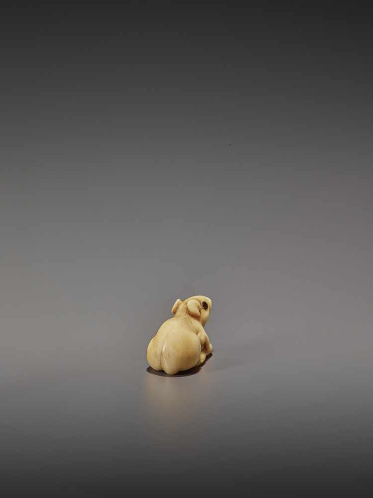A CHARMING MARINE IVORY NETSUKE OF A RAT HOLDING ITS TAIL UnsignedJapan, 19th century, Edo period ( - Image 5 of 10