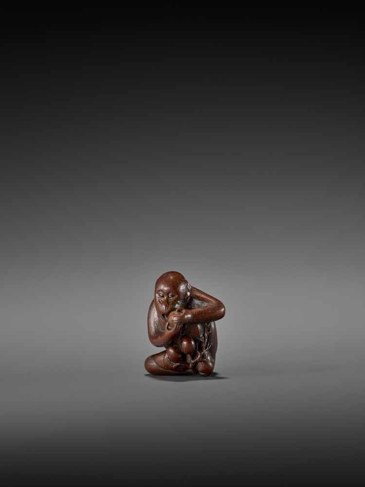 TOMOKAZU: AN EXCELLENT WOOD NETSUKE OF A MONKEY EATING PERSIMMONS By Kano Tomokazu, signed - Image 2 of 11