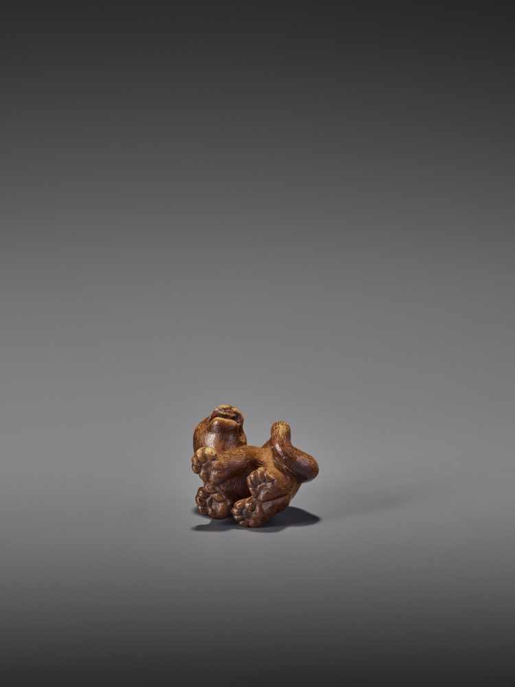A RARE WOOD NETSUKE OF A SNARLING TIGER UnsignedJapan, 19th century, Edo period (1615-1868)A compact - Image 11 of 11