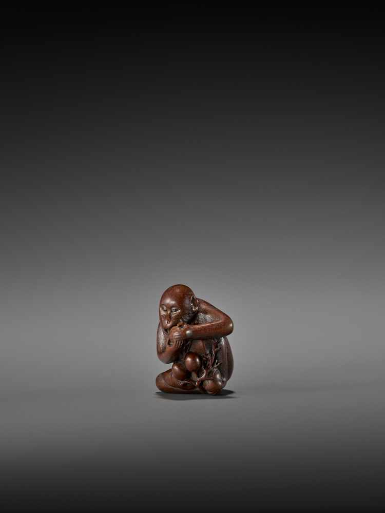 TOMOKAZU: AN EXCELLENT WOOD NETSUKE OF A MONKEY EATING PERSIMMONS By Kano Tomokazu, signed - Image 4 of 11