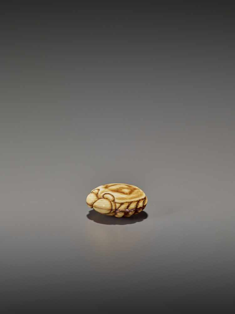 A FINELY STAINED WALRUS IVORY TWO-PART MANJU NETSUKE OF A CRAB UnsignedJapan, Osaka, early to mid- - Image 4 of 10