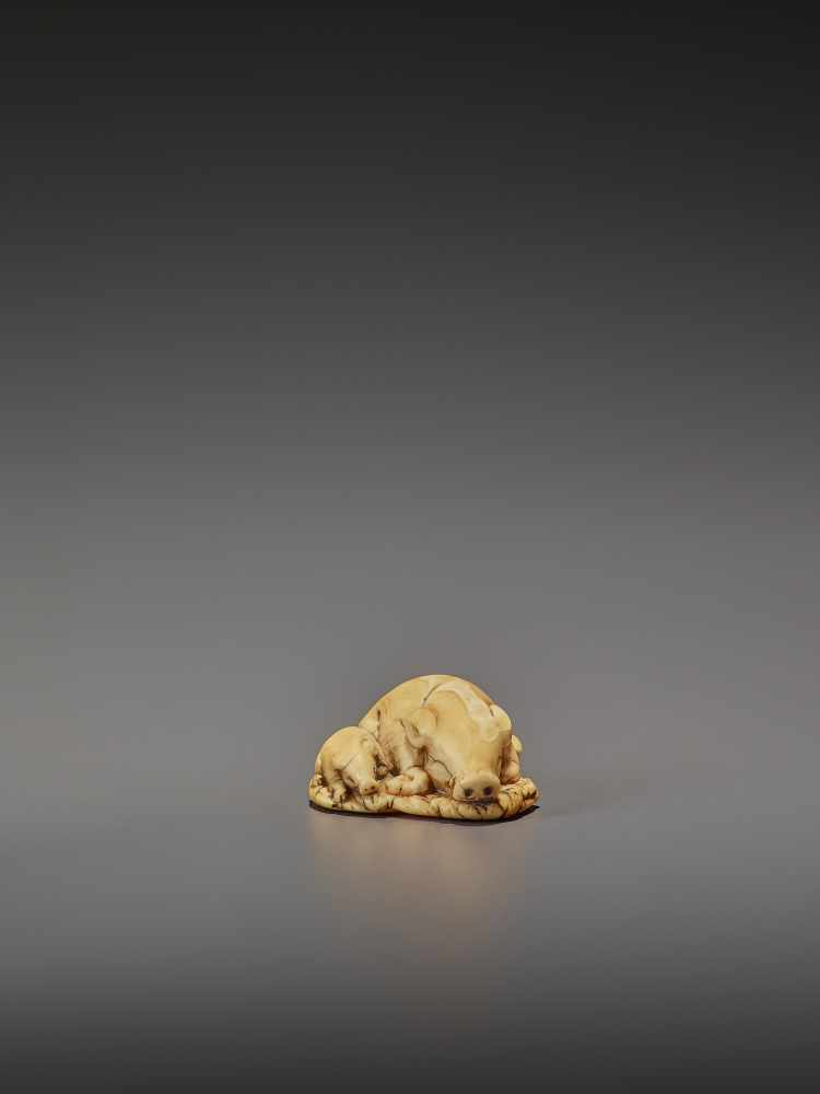 A FINE IVORY NETSUKE OF TWO RESTING BOARS UnsignedJapan, Kyoto, 18th century, Edo period (1615- - Image 4 of 9