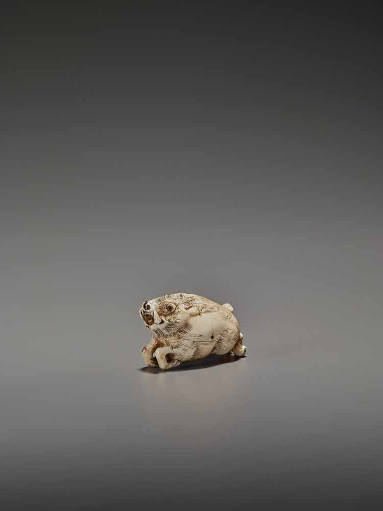 AN UNUSUAL IVORY NETSUKE OF A RUNNING BOAR UnsignedJapan, 18th century, Edo period (1615-1868)A very - Image 2 of 11
