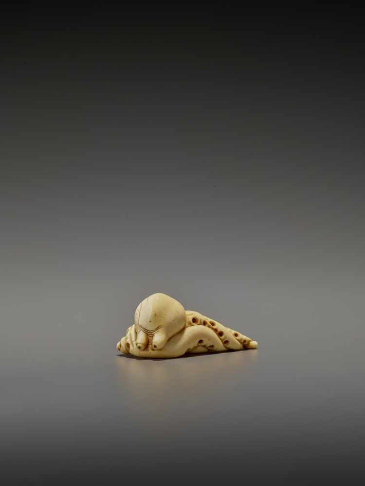 A RARE IVORY NETSUKE OF AN OCTOPUS UnsignedJapan, early 19th century, Edo period (1615-1868)The - Image 3 of 11