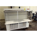 FLOW CLEAN BENCH, CLEAN AIR PRODUCTS