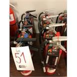 Assorted fire extinguishers, 8pcs