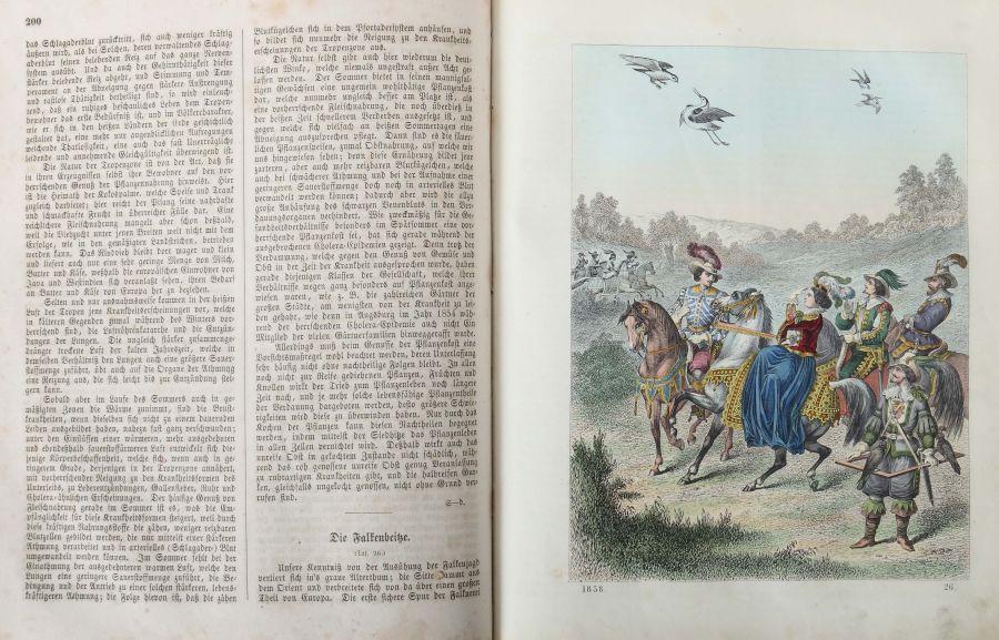 Das Buch der Welt ein Inbegriff des Wissenwürdigsten und Unterhaltendsten aus den Gebieten der - Bild 5 aus 5