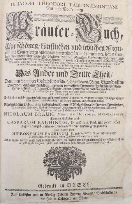 Tabernaemontanus, Jacob Theodor (Jacobus Theodorus) Neu vollkommen Kräuter-Buch, mit schönen und - Bild 5 aus 6