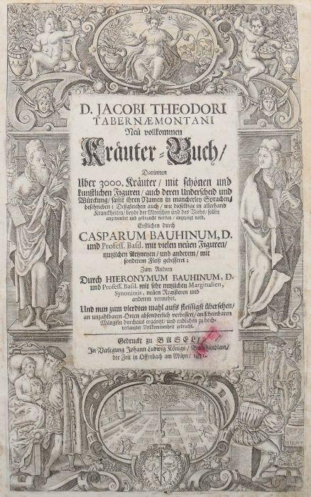 Tabernaemontanus, Jacob Theodor (Jacobus Theodorus) Neu vollkommen Kräuter-Buch, mit schönen und - Bild 3 aus 6