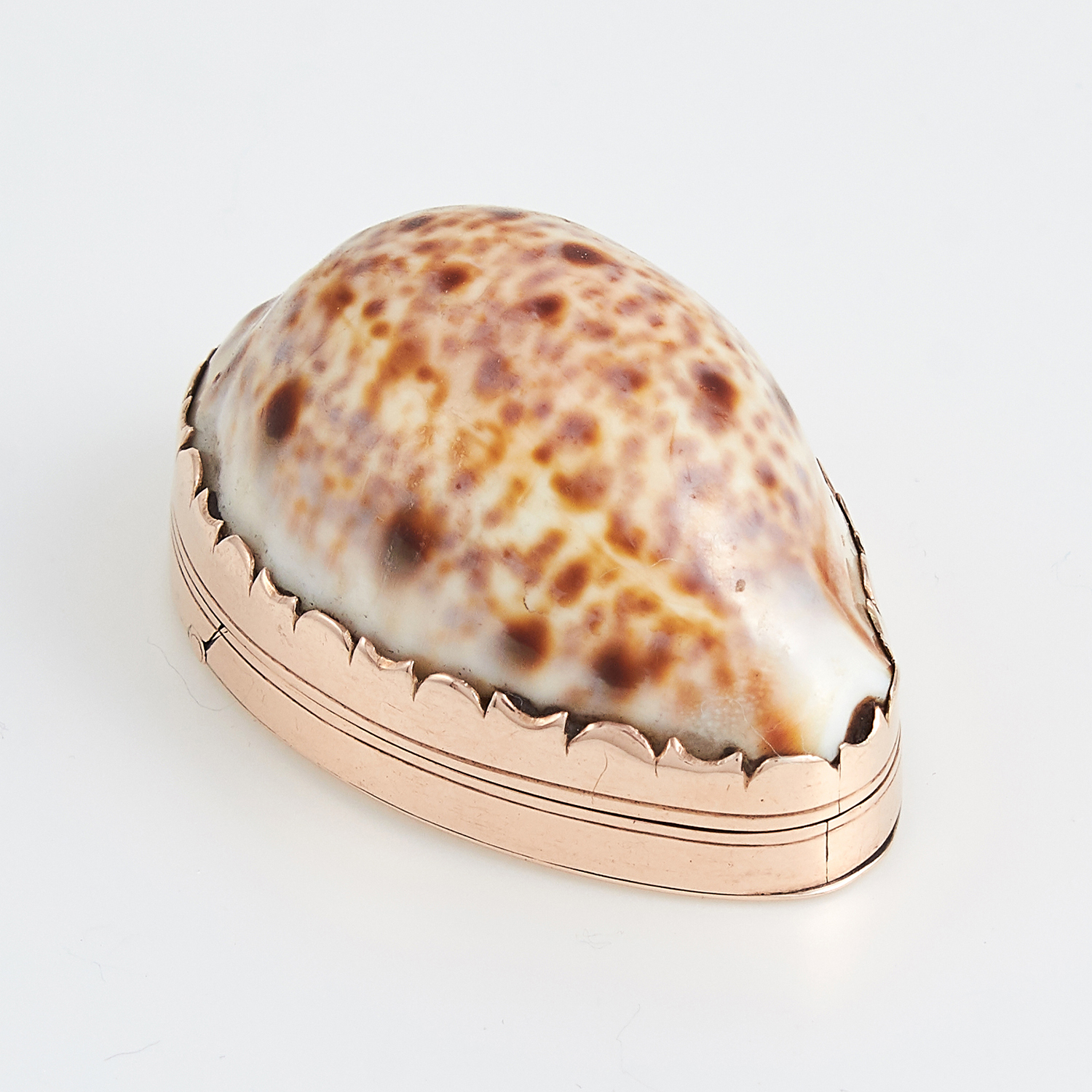 ANTIQUE PROVINCIAL IRISH GOLD COWRIE SHELL SNUFF BOX, CARDEN TERRY OF CORK CIRCA 1780 the body
