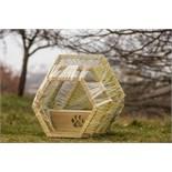 Green Tea Architects and Ben Fogle - Green Nest