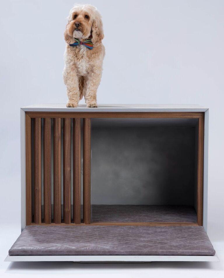 Doggle Box - DLM Architects - Image 4 of 6