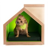 Formation Architects with Bill Cleyndert & Company - Quilty Kennel