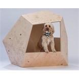 Pim.studio Architects - PiM.dog