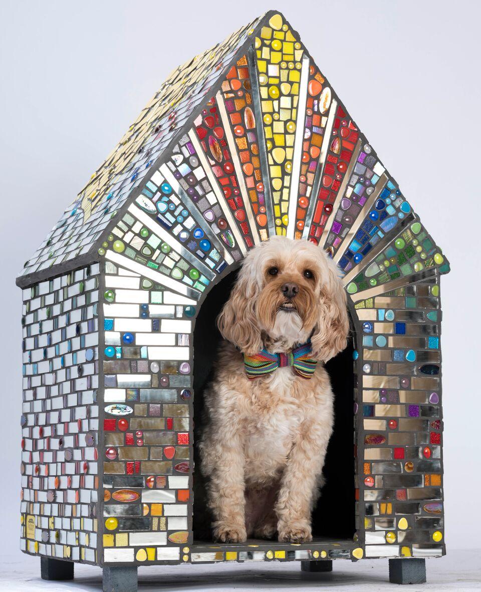 Lot 57 - Sue Penrose Mosaics - Rainbow Disco Dog Kennel