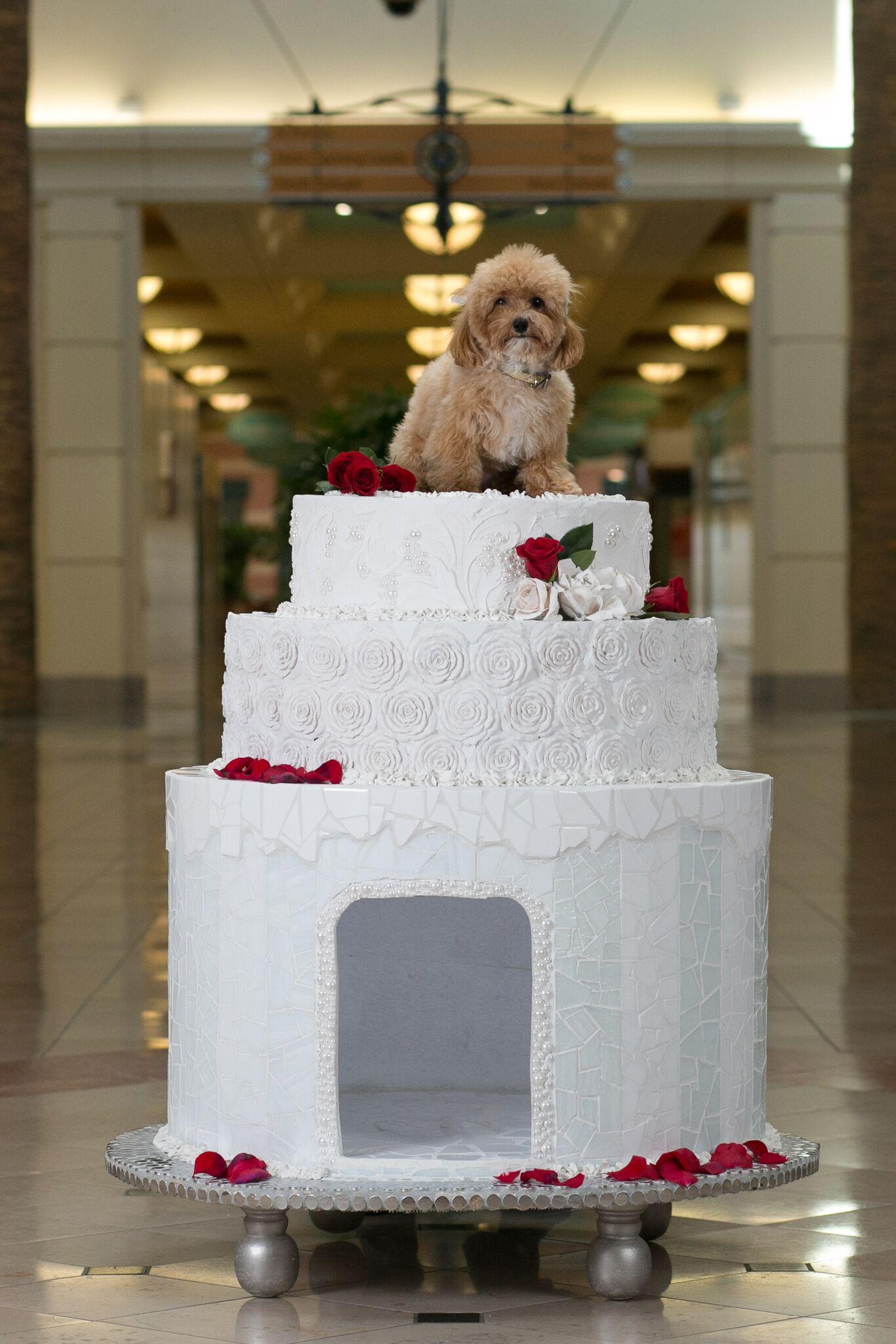Jeff Monsein - The Royal Wedding Cake House - Image 4 of 9