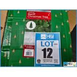 Lotto 12 Immagine