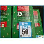 Lotto 56 Immagine