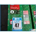 Lotto 47 Immagine