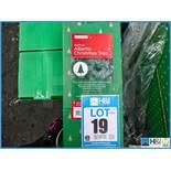Lotto 19 Immagine