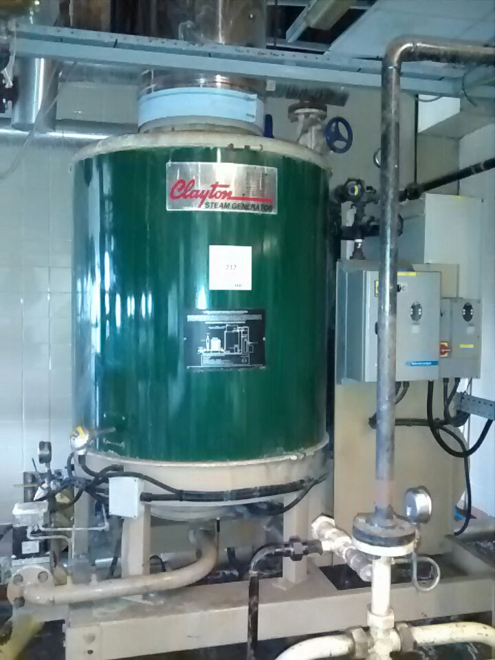 Steam generator for hot water - Clayton