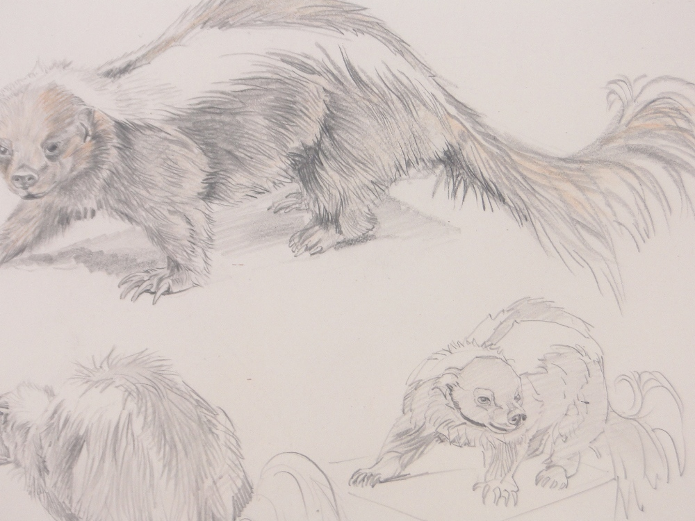 Lot 219 - Raymond Sheppard (1913-1958), 4 pencil and crayon drawings, studies of children and animals,