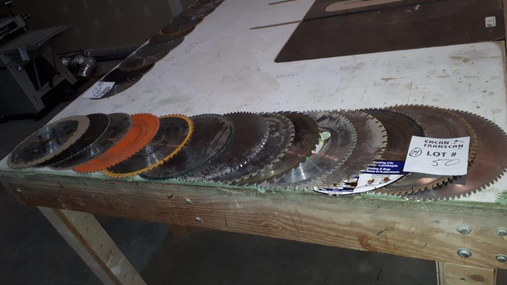 Lot 50 - LOT: (14) Assorted Saw Blades
