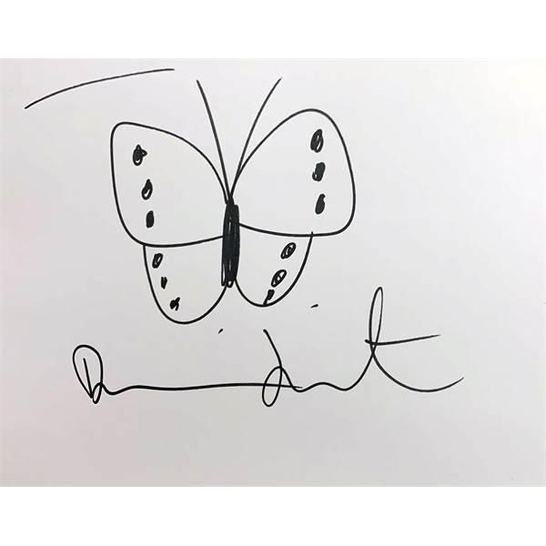 Damien Hirst b1965 British AR, Butterfly. - Image 1