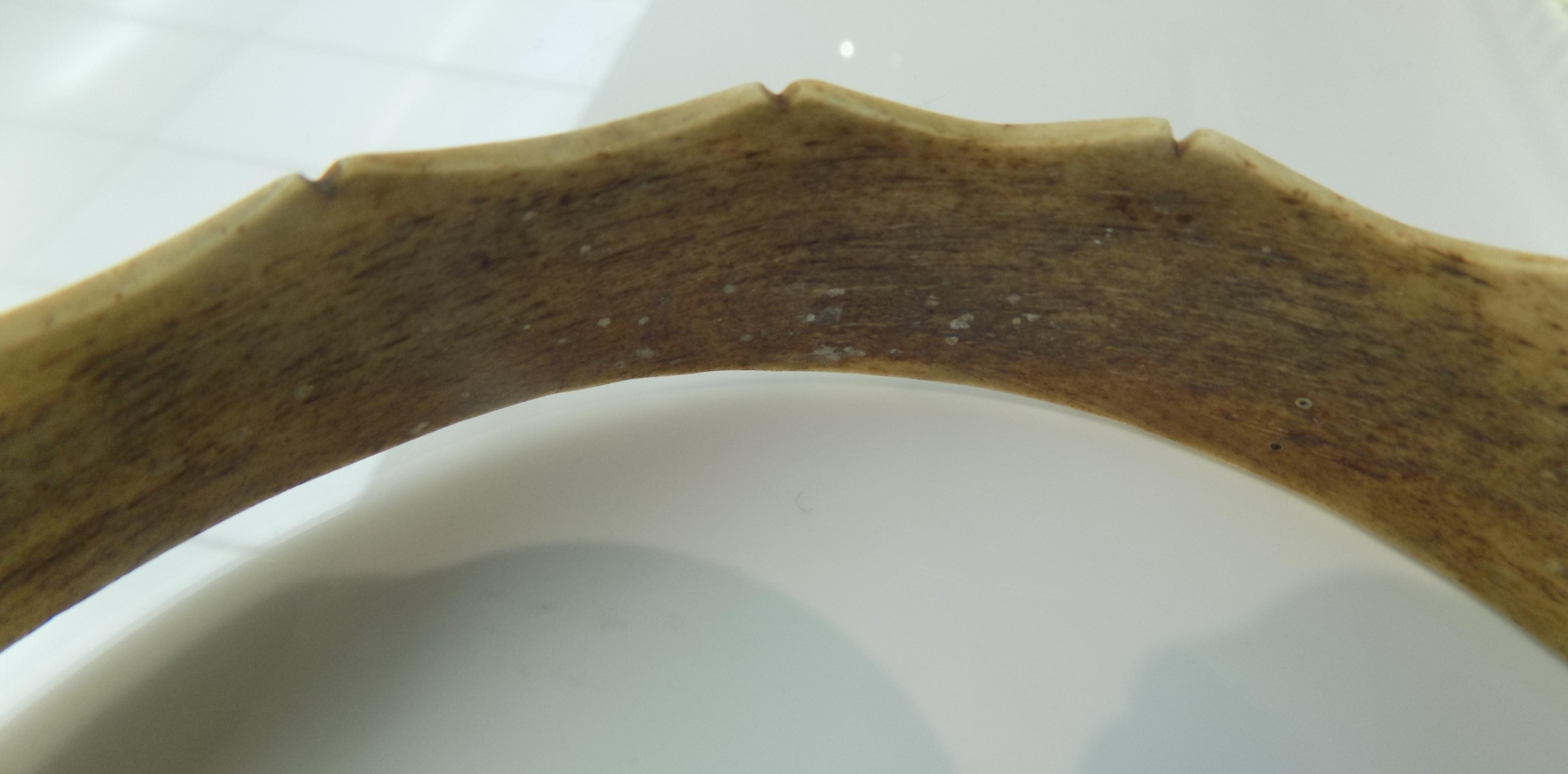 Lot 24 - A scrimshaw bone crown formally the property of Richard Seddon of New Zealand.