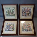 A set of four 18th century style prints of fruit, 38 x 30cm, together with a small similar pair,