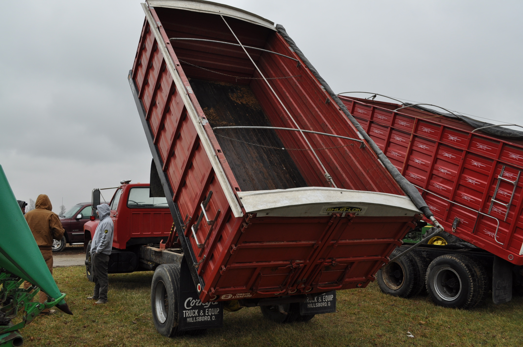 1988 Ford F800 grain truck, single axle, 427 V-8, auto, 11 R 22.5 tires, 16' Omaha Standard bed, - Image 2 of 17