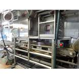 RAYTEC VISION (2013) RAYVOLUTION RT-250-B-R STAINLESS STEEL OPTICAL SORTING MACHINE WITH RAYTEC