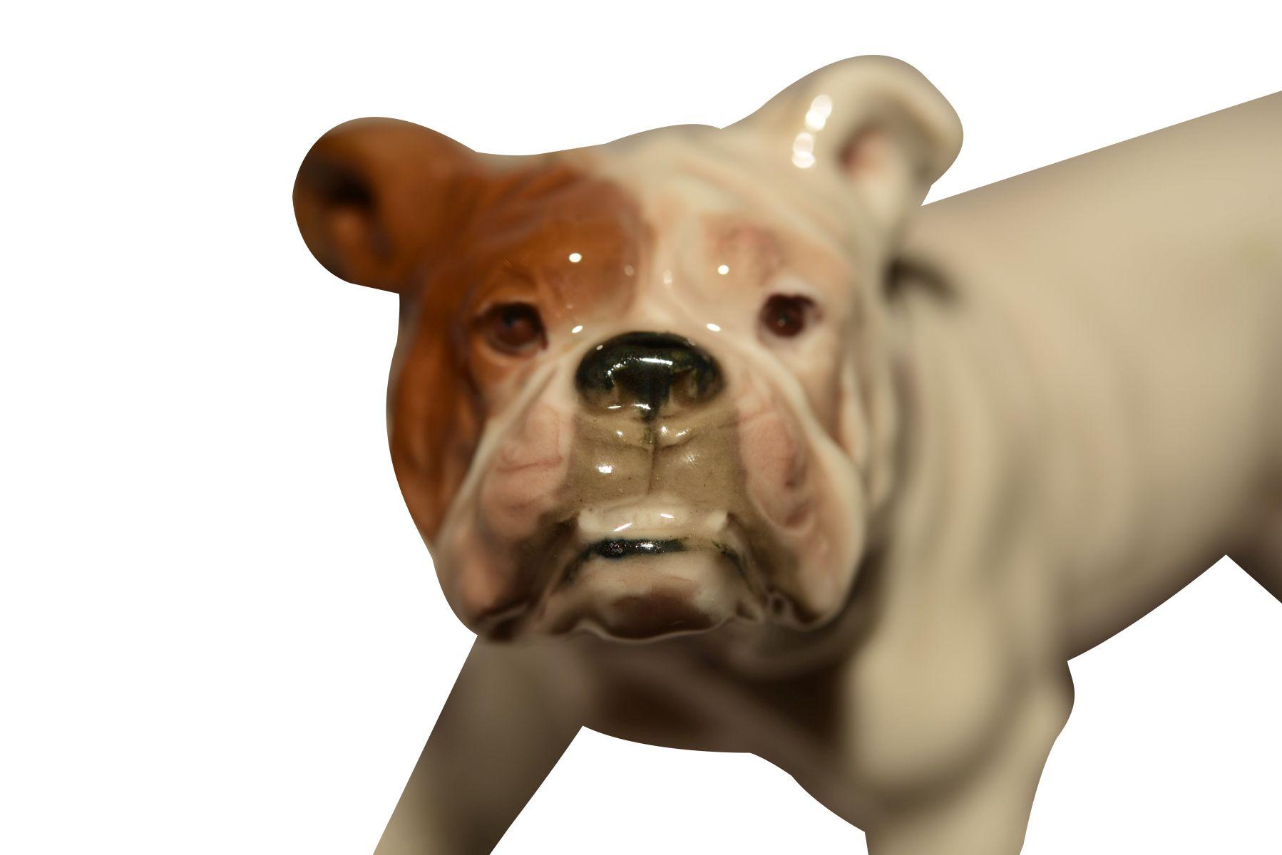 """""""Frazösische Bulldoge"""" Meissen - Bild 4 aus 5"""