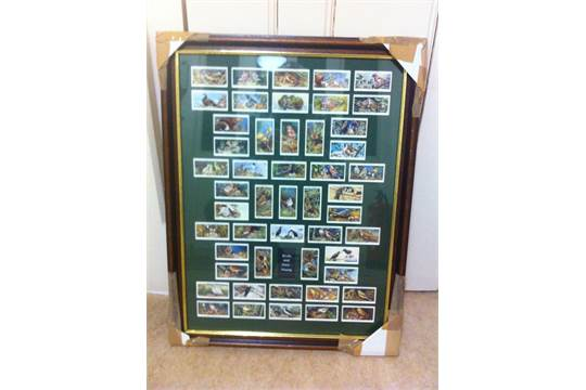 Lot 161 - CIGARETTE CARDS : 1937 Birds and their Y