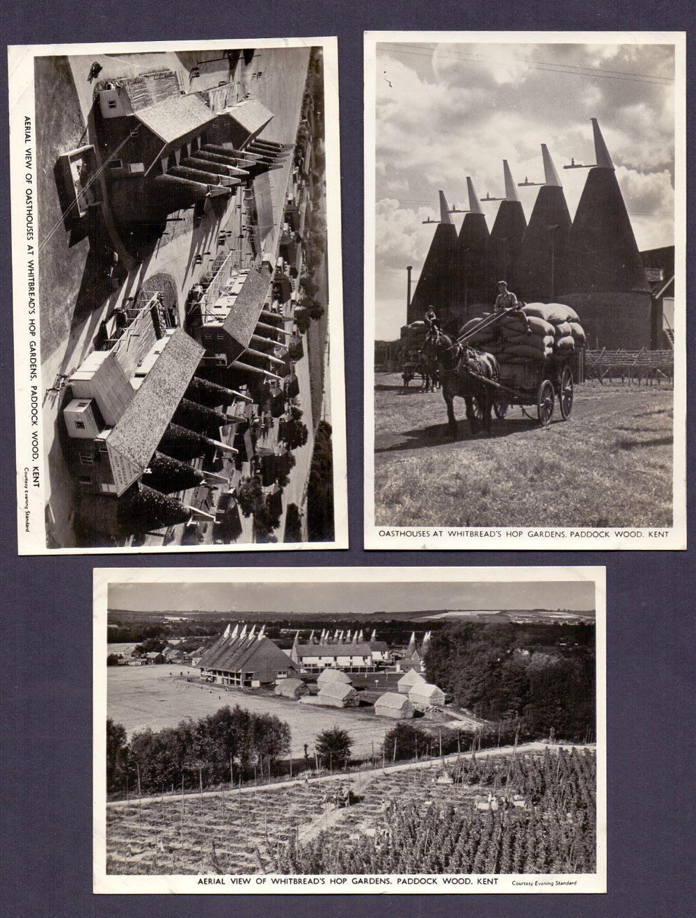 Lot 159 - POST CARDS : KENT, three photographic po