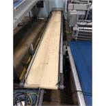"HFA 17.5"" x 13' Belt Conveyor"