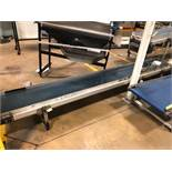 "23.5"" x 10' Belt Conveyor"