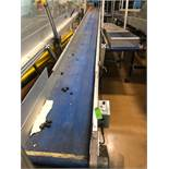 "HFA 15"" x 20' Cleated Belt Conveyor"