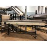 "PQ Systems 22.5"" x 10' Belt Conveyor"