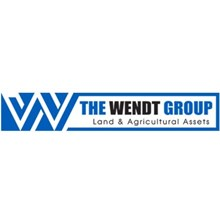 The Wendt Group