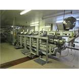 C.A.T. Stainless Steel Grading Line, dual lanes, 10 positions per lane, pneumatic drop chutes,