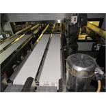 "Stainless Steel Dual Lane Inline Checkweigher, 9"" wide plastic belts 6' L, Weigh-Tronix Mdl. WI-"