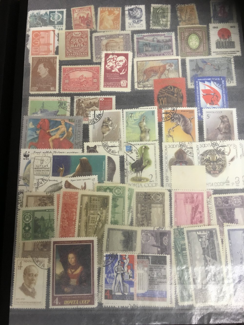 Lot 50 - STAMPS : CHARITY lot generously donated by a customer.