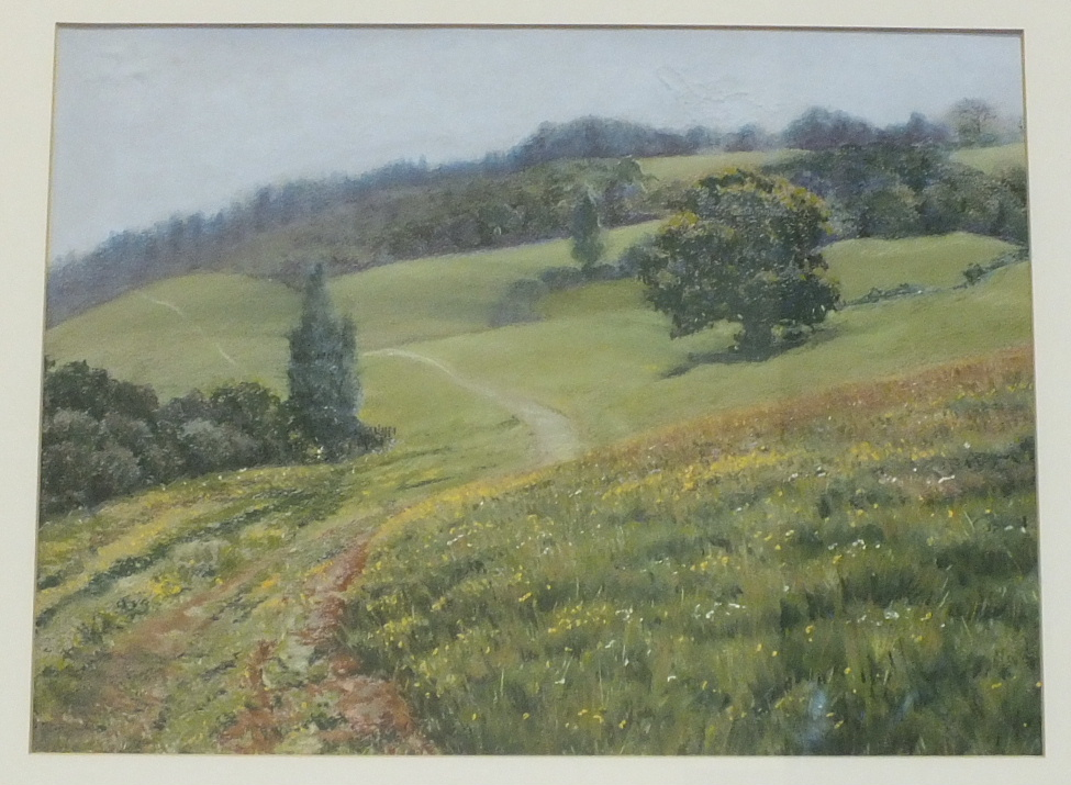 Lot 20 - Lionne Crossley WALK TO ASH Framed pastel, signed and titled label verso, 33 x 43.5cm.