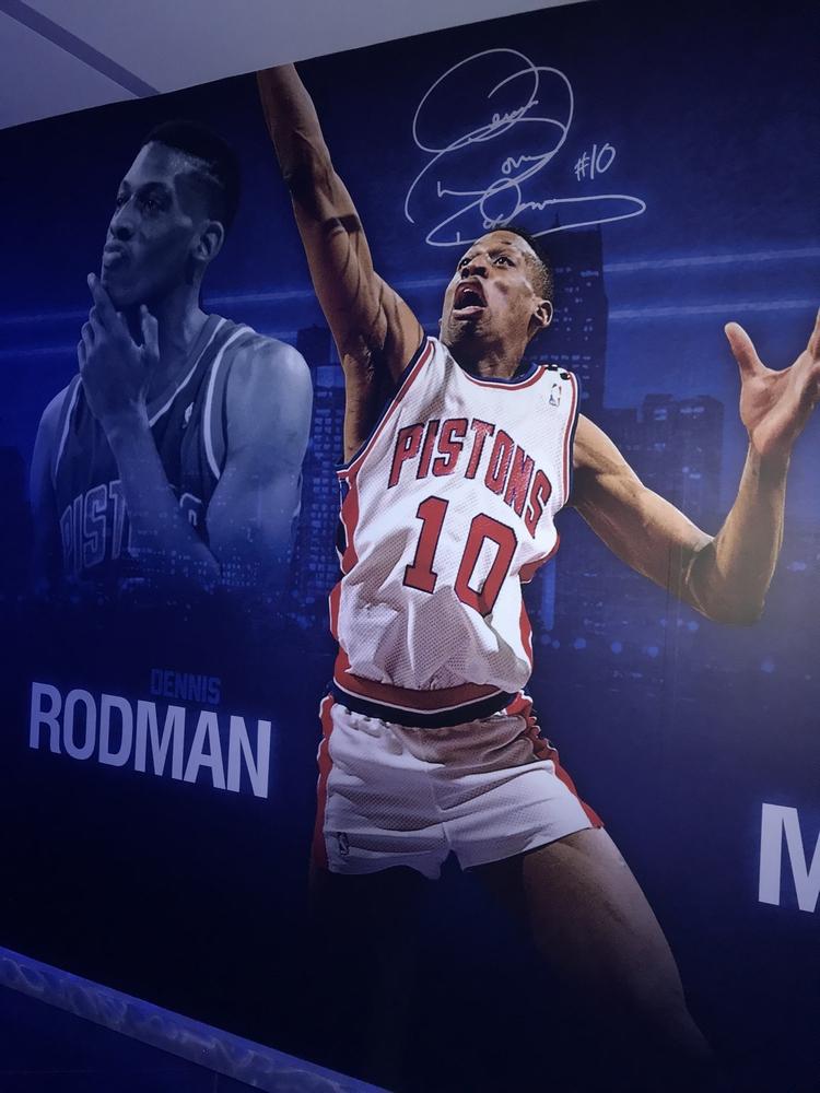 Dennis Rodman - Vinyl Wall Mural , Dim. 100 in w x 116 in h , Location: Locker Room ***Note from